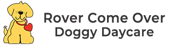 Dog Grooming, Daycare, & Training In Monclova, OH | Rover Come Over Doggy Daycare